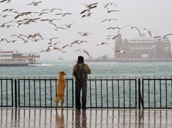 Viajeros en Estambul.