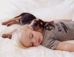 Todos los días Beau, de dos años, y su perro Theo duermen juntos la siesta. Las fotografías publicadas por sus padres causaron sensación en Internet.