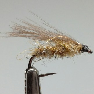 cdc-sedge-bl