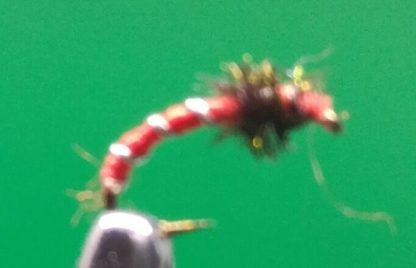 red-buzzer