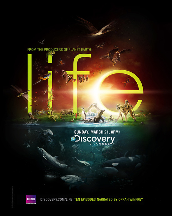Life Discovery Channel