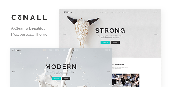Conall – Neat Multipurpose Theme – WP Theme Download