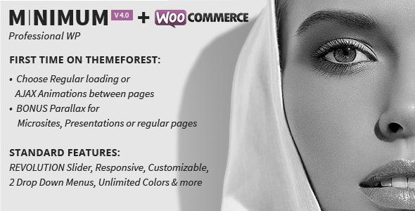 MINIMUM – Expert WordPress Theme – WP Theme Download