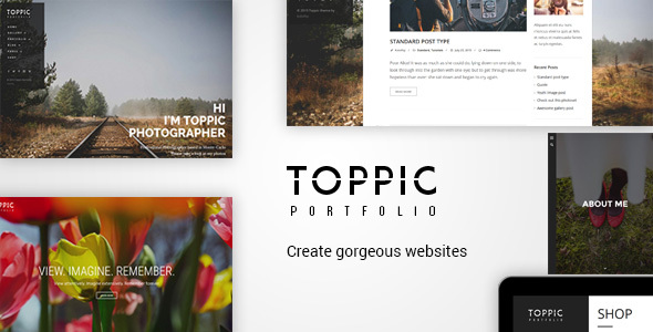 TopPic – Portfolio Pictures Theme – WP Theme Download