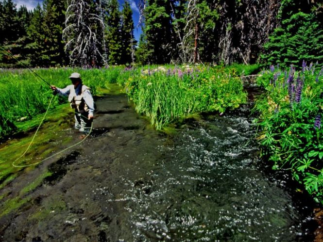 Headwaters_of_the_Deschutes_R_near_Sunriver_1a_72_dpi