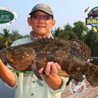 Grouper Galore - SW Jurassic Fishing Pond