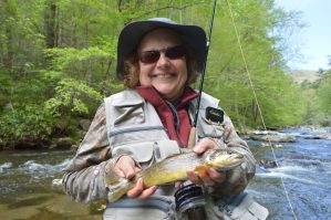 Hazel Creek, Fly Fishing the Smokies Best Fishing Guides for Trout in Smoky Mountains,