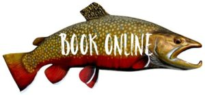 Book Online, Fly Fishing the Smokies, Best Trout Fishing Fly Fishing Guides in Smoky Mountains Gatlinburg Pigeon Forge Severville