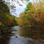 October Fly Fishing the Great Smoky Mountains, Fly Fishing the Smokies
