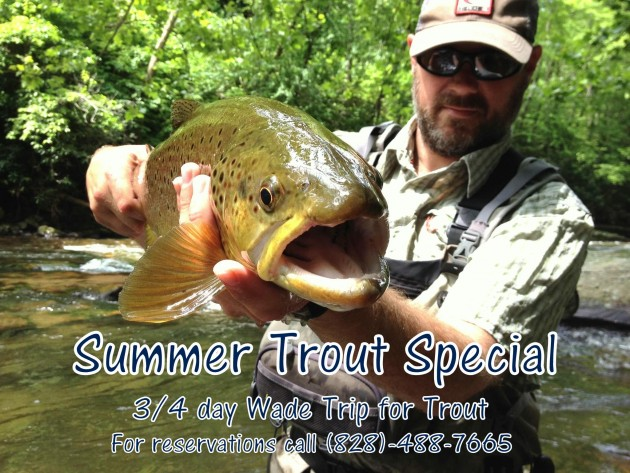 Fly Fishing Guides Smoky Mountains Trout Fishign Trips Bryson City Gatlinburg Pigeon Forge Sevierville Cherokee