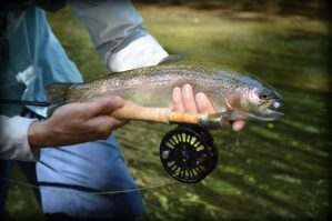 Smoky Mountain Fly Fishing Guides, Fly Fishinf the Smokies Bryson City Cherokee Highlands Franklin