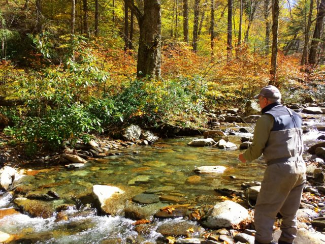 Great smoky mountains fishing report 9 27 16 for Smoky mountain trout fishing