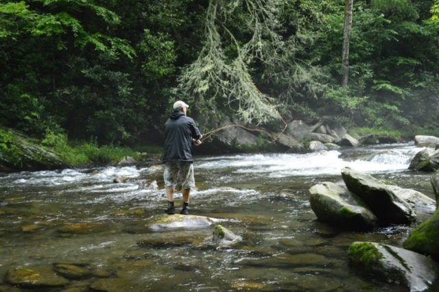 Great smoky mountains fishing report 9 9 16 for Smoky mountain trout fishing