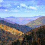 Smoky Mountain Fly Fishing, Fly Fishing the Smokies, Great Smoky Mountains Fly Fishing Guides