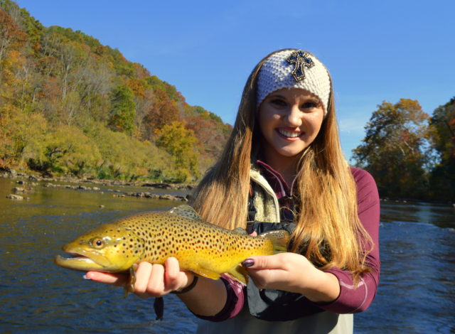 November Fly Fishing, Fly Fishing the Smokies, Trout Fishing Guides Smoky Mountainns, Tuckasegee River Fly Fishing Guides,