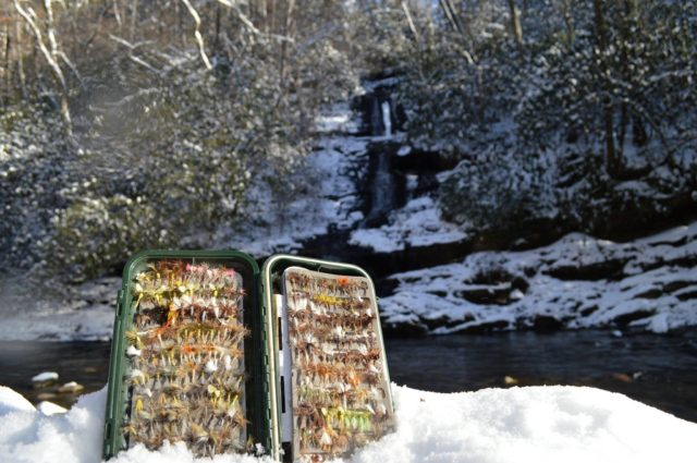 Great Smoky Mountains Fishing Report January, Great Smoky Mountains Fly Fishing Winter Fishing Report, Fly Fishing the Smokies,
