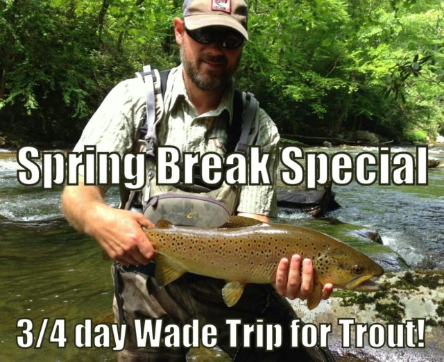 Fly Fishing Guides Great Smoky Mountains Gatlinburg Pigeon Forge Cherokee Bryson City Trout Fishing Guides