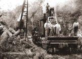 Steam engine at work logging