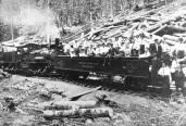 Elkmont train