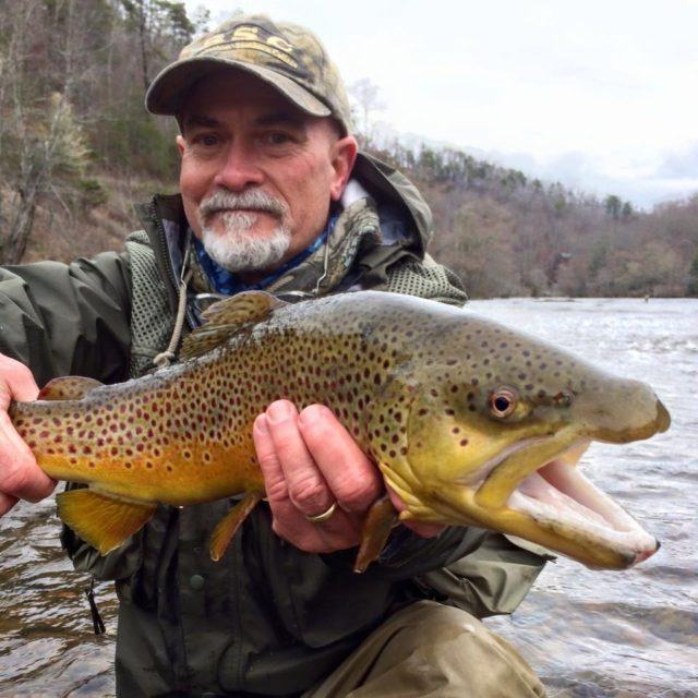 Winter Trophy Trout, , Big Brown Trout Tuckasegee River, Great Smoky Mountains Fishign Report mid March, Fly Fishing the Smokies,