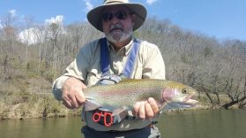 Smoky Mountains Fly Fishing Report March 23rd, Fly Fishing the Smokies, Smoky Mountain Fly Fishing Guides and Trips Gatlinburg Pigeon Forge Tennessee Bryson City Cherokee North Carolina, Western North Carolina Fly Fishing Guides
