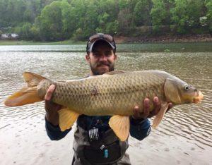 Carp Photo Gallery, Carp Fly Fishing Guides and Trips. Smoky Mountains Fly Fishing Guides, Carp Fly Fishing North Carolina