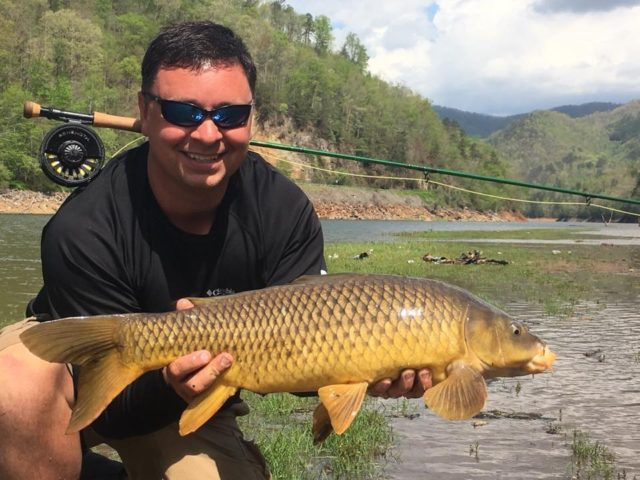 Carp Fly Fishing Guides, Fly Fishing the Smokies, Poor Mans Bonefish, Golden Bonefish, Golden Ghost, Smoky Mountains Fly Fishing Guides