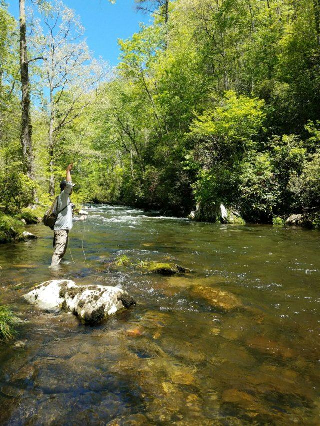 Hazel Creek Fly Fishing Report May 4th