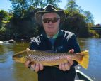 Bryson City Brown Trout, October Fly Fishing Report