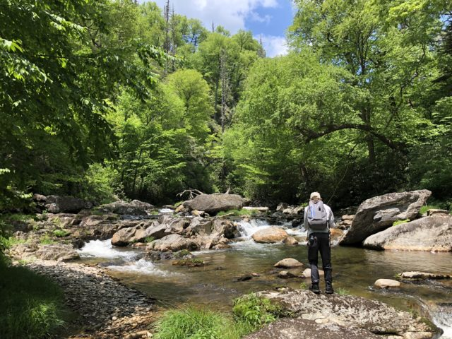 Fly Fishing the Smokies, Smoky Mountain Fly Fishing, Brook Trout Great Smoky Mountains National Park,
