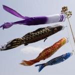 鯉のぼりを飾る時期はいつからいつまでなの?