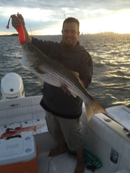 40 inch plus Boston striped bass