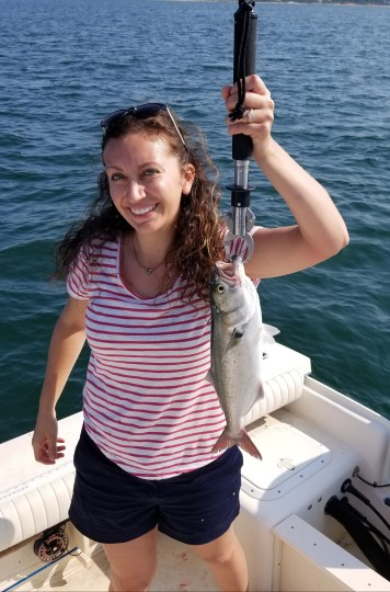 Martha's Vineyard Bluefish on light tackle