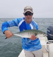 Cape Cod Albie