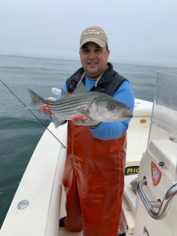 Fly Fishing the rips for Stripers