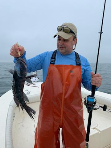 Nantucket Sound Black Sea Bass
