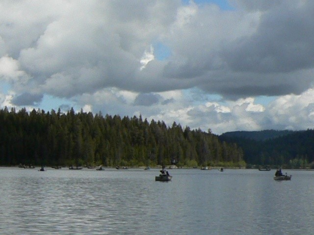 Roche Lake Kamloops Area Fishing Report