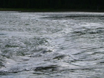 ... water rising fast!