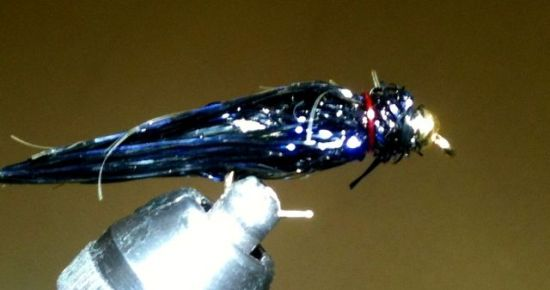... the Bipolar Balanced Leech fly in regular swimming mode!