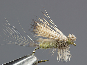 Harrop's Hairwing Dun