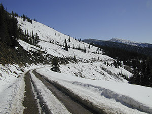 Snow covered Lolo pass in September