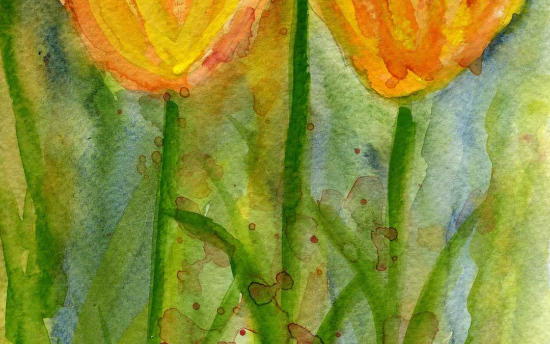 Tulips – Daily painting #483