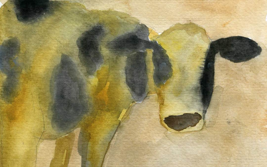 Turning Cow – Daily painting #512
