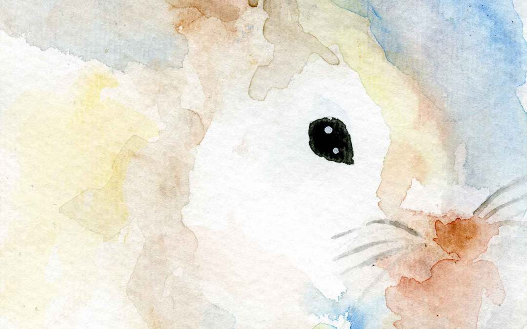 Rabbit – Daily Painting #575 (SOLD)