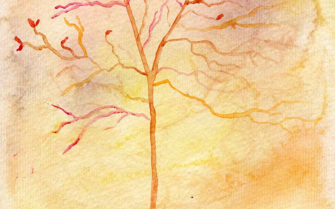 Autumn Tree (3) – Daily Painting #612 (SOLD)