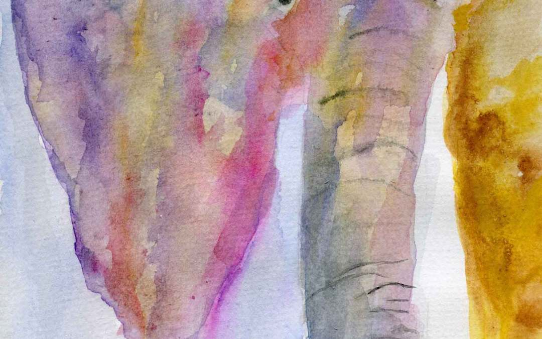 Elephant – Daily painting #644