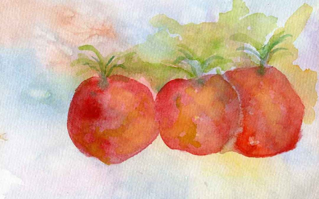 Three Tomatoes – Daily painting #854 (SOLD)