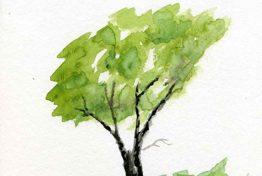 Green Tree – Daily painting #1152