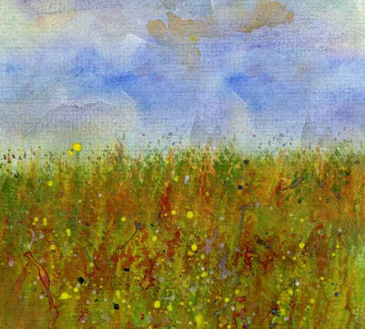 Grass meadow (#075)