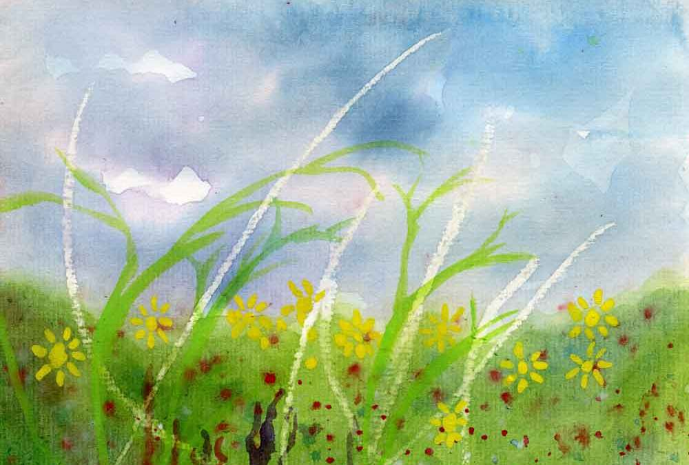 Grass and sky (#206)